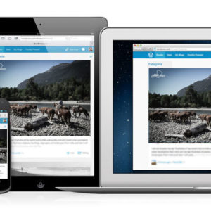 Diseño Web Site WordPress Patagonia Colors