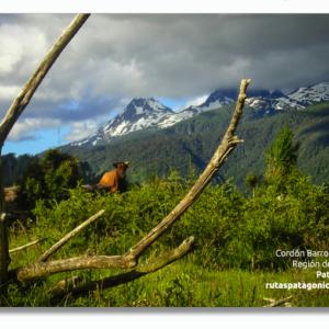 PACK 100 Postales Turísticas Montañas Barros Arana