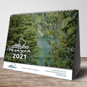 Pack de 10 Calendarios de Escritorio Patagonia 2021