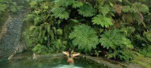 Puyuhuapi Lodge & Spa @ Termas Puyuhuapi Lodge & Spa